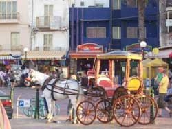 Horse Carriage Ride in Bugibba
